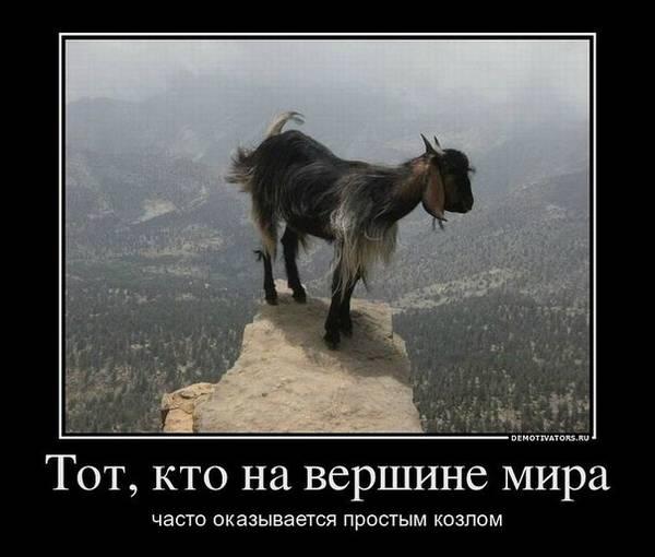 http://s1.uploads.ru/t/anZer.jpg