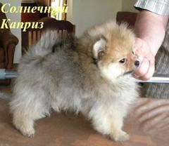http://s1.uploads.ru/t/avtOM.jpg
