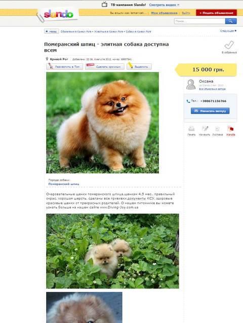http://s1.uploads.ru/t/bM8oT.jpg