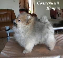 http://s1.uploads.ru/t/cIrQT.jpg