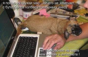 http://s1.uploads.ru/t/cJLUH.jpg