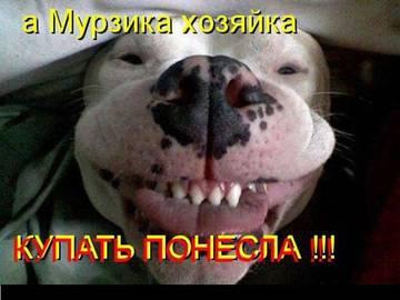 http://s1.uploads.ru/t/cjn5N.jpg