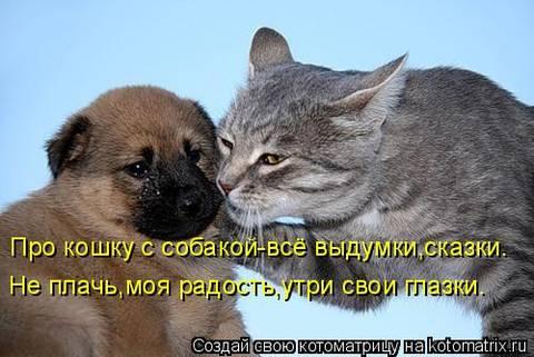 http://s1.uploads.ru/t/dVIJk.jpg