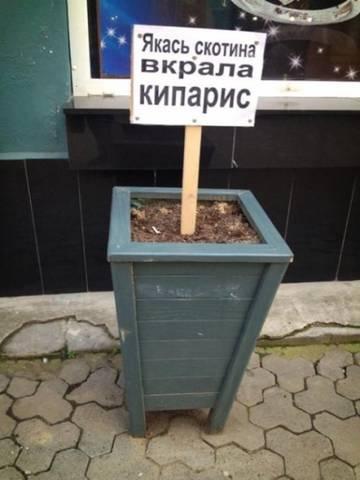 http://s1.uploads.ru/t/duKU8.jpg
