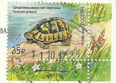 http://s1.uploads.ru/t/dylmk.jpg