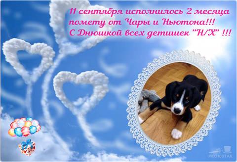 http://s1.uploads.ru/t/e3uoU.jpg