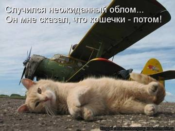 http://s1.uploads.ru/t/eLnwg.jpg