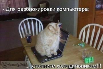 http://s1.uploads.ru/t/eZtpF.jpg