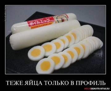 http://s1.uploads.ru/t/ekV0s.jpg