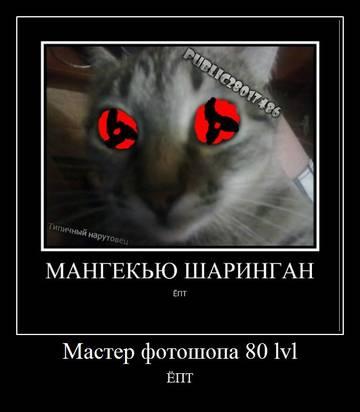 http://s1.uploads.ru/t/ekxMj.jpg