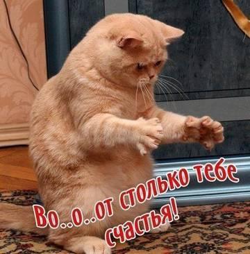 http://s1.uploads.ru/t/eoZaG.jpg