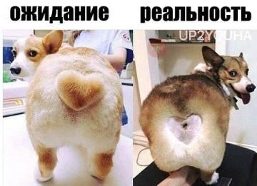 http://s1.uploads.ru/t/f0K8D.jpg
