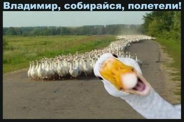 http://s1.uploads.ru/t/fn7DT.jpg
