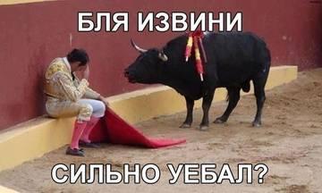 http://s1.uploads.ru/t/gIMdk.jpg