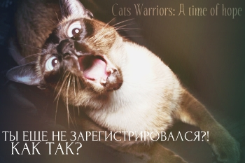 http://s1.uploads.ru/t/gSYBv.jpg