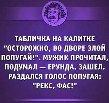 http://s1.uploads.ru/t/gmpor.jpg