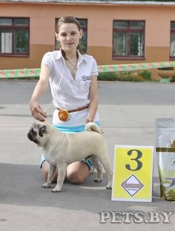 http://s1.uploads.ru/t/gxfN5.jpg