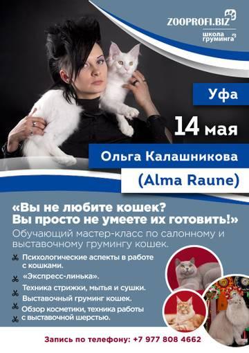 http://s1.uploads.ru/t/iNDRw.jpg