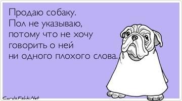 http://s1.uploads.ru/t/jpakc.jpg