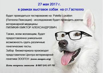 http://s1.uploads.ru/t/lC8Qh.jpg
