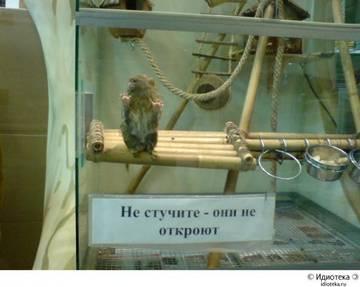 http://s1.uploads.ru/t/mGKjN.jpg