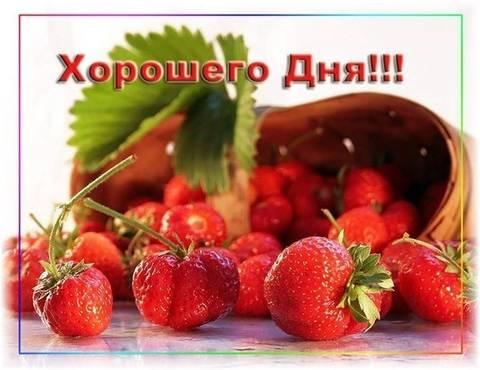 http://s1.uploads.ru/t/mXL26.jpg