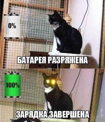 http://s1.uploads.ru/t/mlayU.jpg