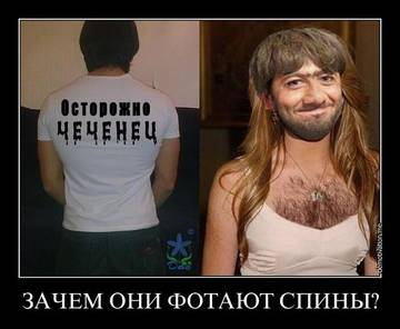 http://s1.uploads.ru/t/mz8Pt.jpg