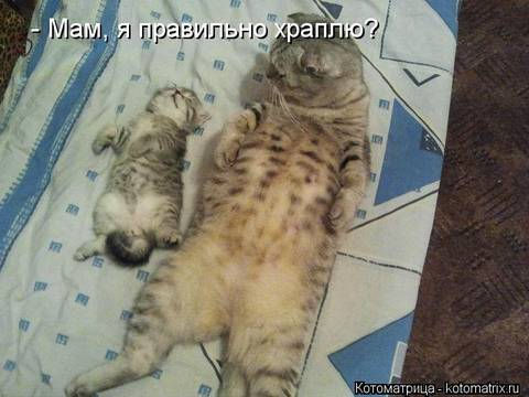 http://s1.uploads.ru/t/nF3zr.jpg