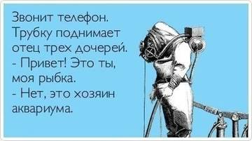 http://s1.uploads.ru/t/nHxLc.jpg