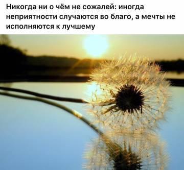 http://s1.uploads.ru/t/neEkr.jpg