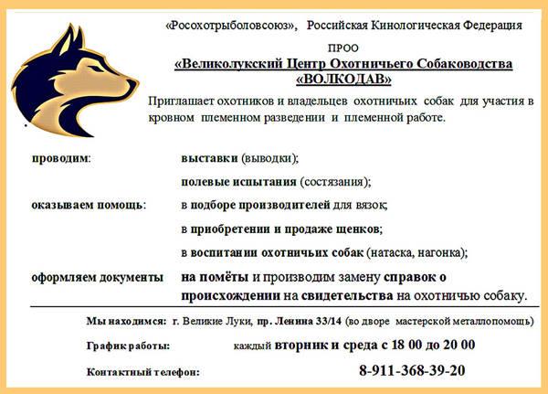 http://s1.uploads.ru/t/o4e9f.jpg