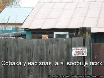 http://s1.uploads.ru/t/oC59M.jpg