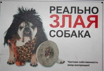 http://s1.uploads.ru/t/oUw7t.jpg
