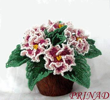 http://s1.uploads.ru/t/olmWb.jpg