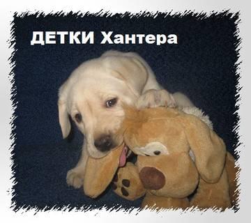 http://s1.uploads.ru/t/ouj81.jpg
