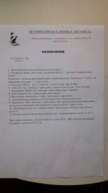 http://s1.uploads.ru/t/pM4Gd.jpg