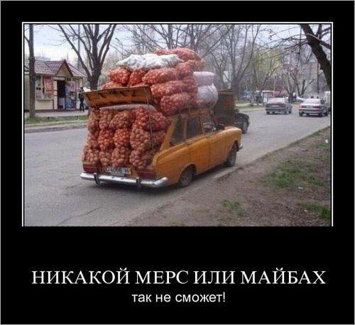 http://s1.uploads.ru/t/pNJyL.jpg