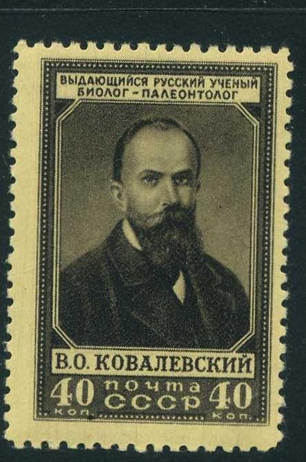 http://s1.uploads.ru/t/pP9F6.jpg