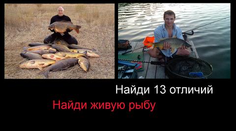 http://s1.uploads.ru/t/peU2x.png