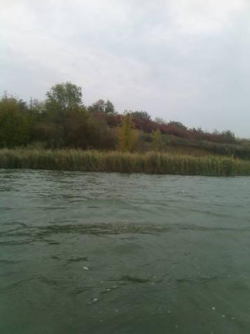 http://s1.uploads.ru/t/pltFo.jpg