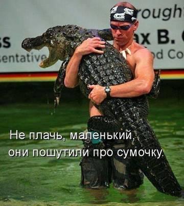 http://s1.uploads.ru/t/poOeJ.jpg