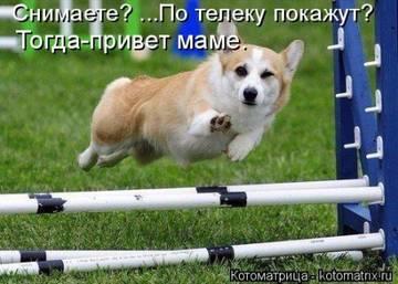 http://s1.uploads.ru/t/qFbsG.jpg