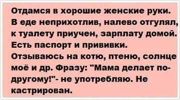 http://s1.uploads.ru/t/rb5lP.jpg