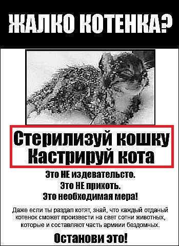 http://s1.uploads.ru/t/s2EKV.jpg