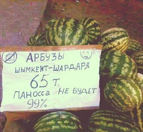 http://s1.uploads.ru/t/sX3pO.jpg