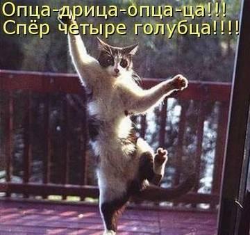 http://s1.uploads.ru/t/swSzB.jpg