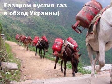 http://s1.uploads.ru/t/tEeiP.jpg