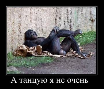 http://s1.uploads.ru/t/uLW9g.jpg