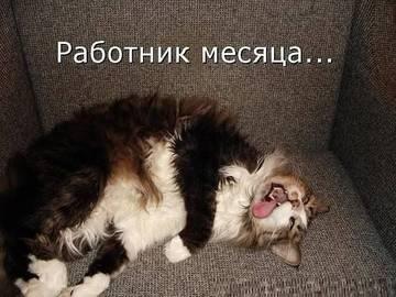 http://s1.uploads.ru/t/wXTfn.jpg